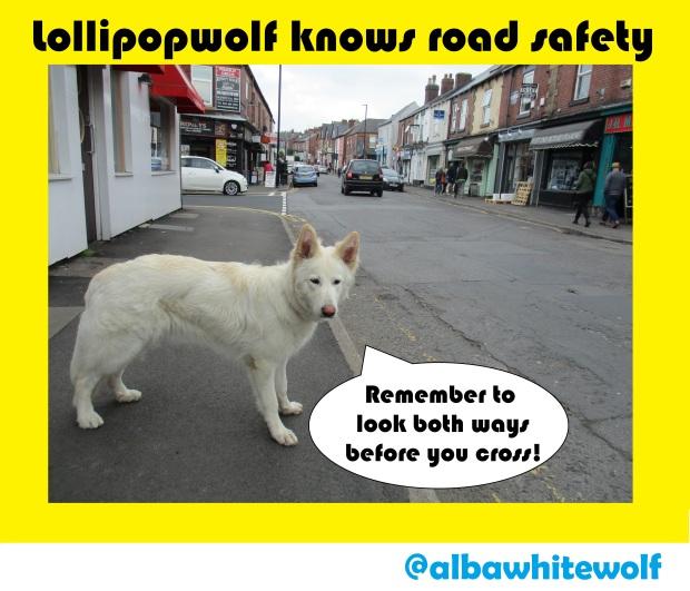 lollipopwolf