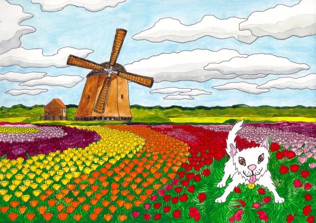 Netherlands C